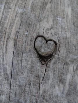 wooden scar